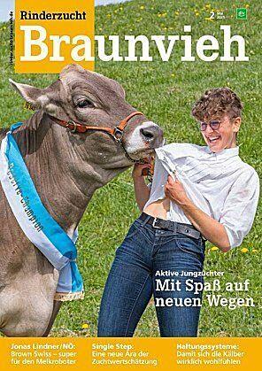 Rinderzucht Braunvieh