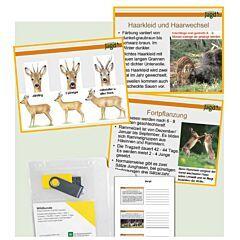 PowerPointPräsentationen Wildkunde