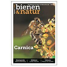 bienen&natur Ausgabe 09/2020
