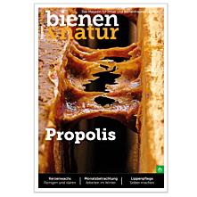 bienen&natur Ausgabe 11/2021